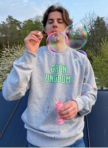 Bild på Collegetröja Grå - Grön Ungdom
